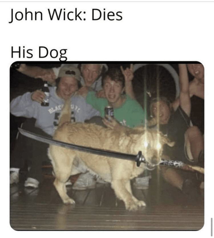 Dog with real sword in it's mouth as background guys cheer him on.