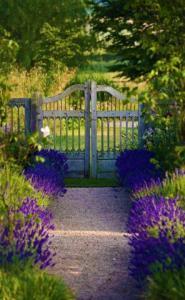 purplepathwithgate