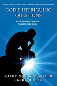 Cover image for God's Intriguing Questions