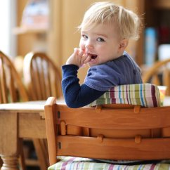 Table High Chair Reviews Tulip And Chairs Nz The Ultimate Shopping Guide Our Top 3 Highchairs Reviewed Of