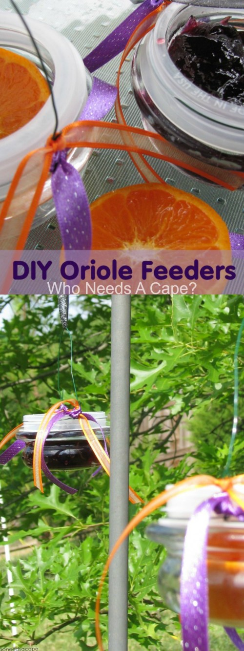 DIY Oriole Feeders — Repurpose your old candle lids to make feeders for your feathered friends! | Who Needs A Cape?