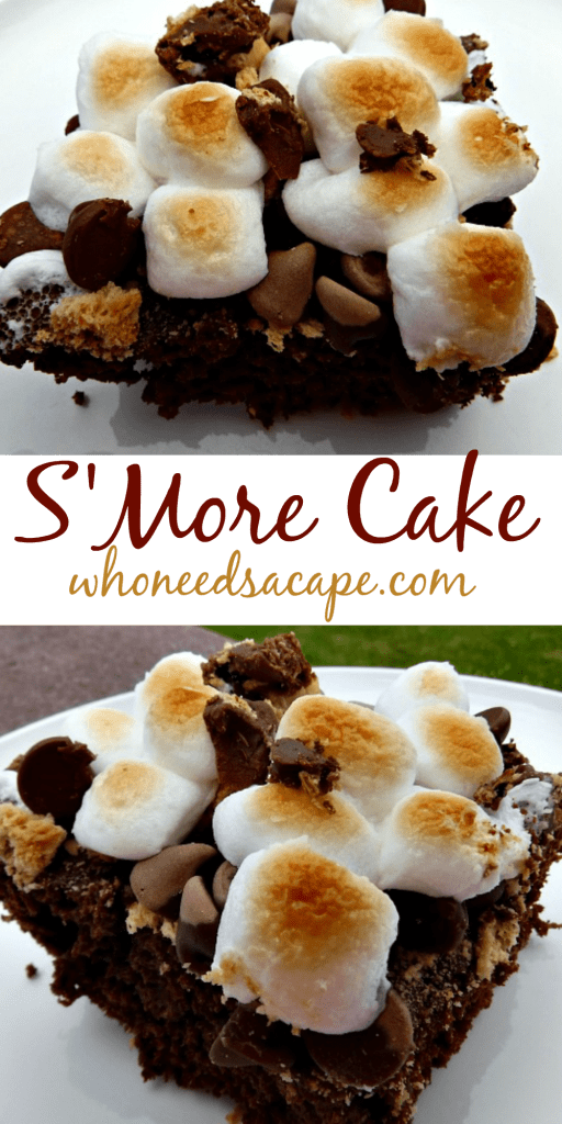 s'more cake exp pin