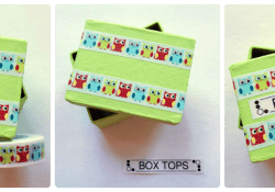 Craft Your Own Box Tops Collection Container
