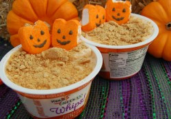Pumpkin Patch Yogurt Snacks