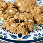 Cranberry White Chocolate Breakfast Cookie