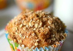 Applesauce Muffins with Streusel Topping