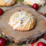 Cranberry White Chocolate Chip Drop Cookies