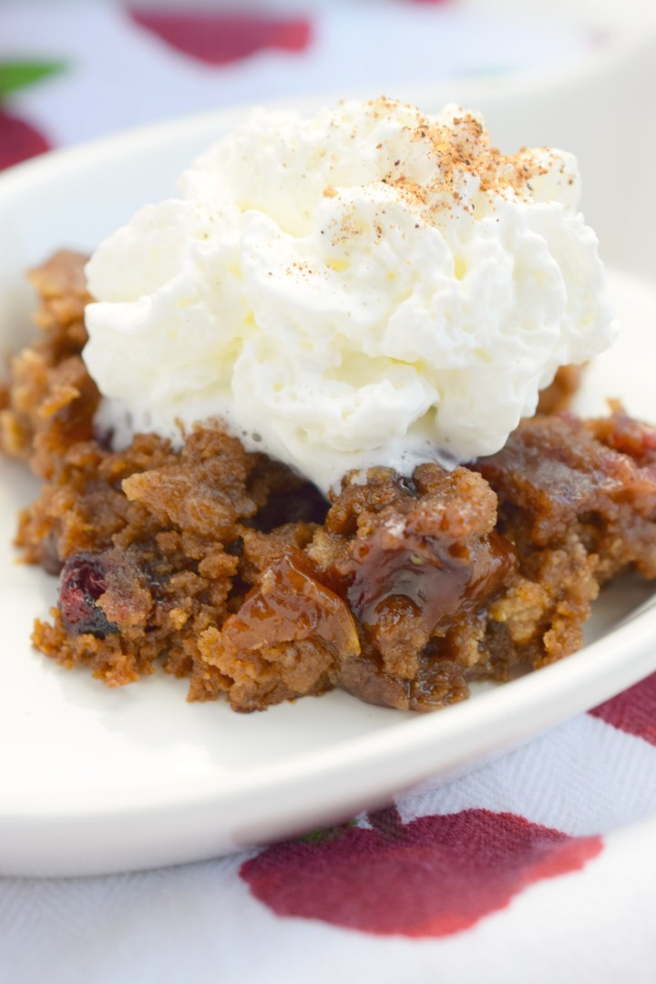 Slow Cooker Apple Cranberry Spice Cake