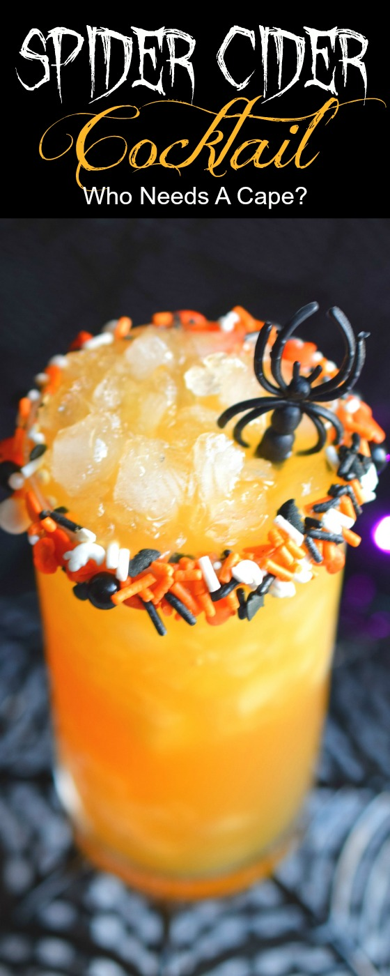 Add a Spider Cider Cocktail to your Halloween tricks and treats! This easy to make drink is perfect for parties, your guests will love it.