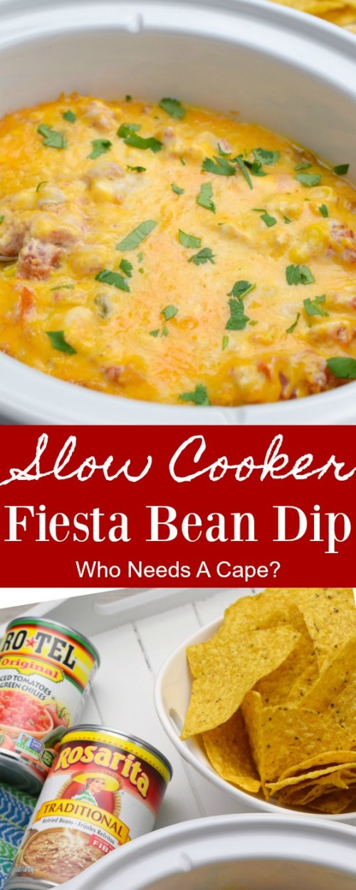 slow cooker with finished dip