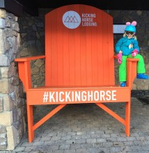 Pink rabbit rides the Kicking Horse.