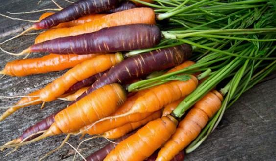 5 Benefits of Growing Your Own Organic Garden