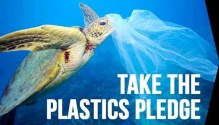 Plastic Bag Ban, 6 Making a Huge Difference