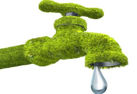 Eco-Friendly Plumbing: An Introduction