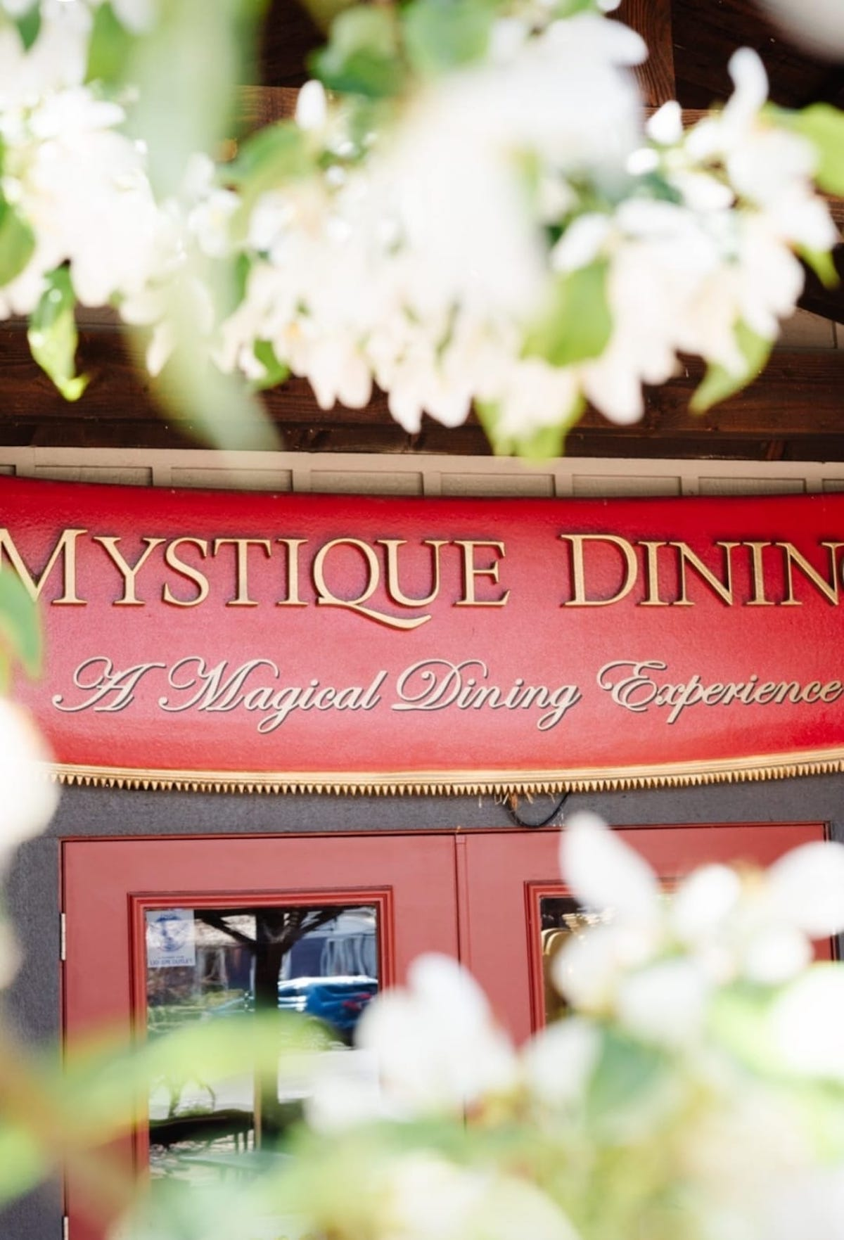 Magical Experience, Mystique Dining, Soon to Appear in La Jolla, California