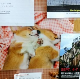 The picture of Corgi puppies spooning taped to Cathy's door.