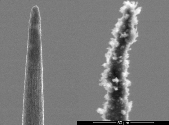 Naked conical electrode, compared to one covered with a scrubby forest of nanotubes