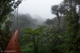 Bosque Nubioso de Monteverde