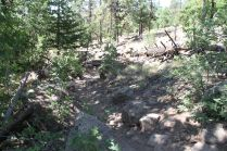 Hard to see the trail through the rocks