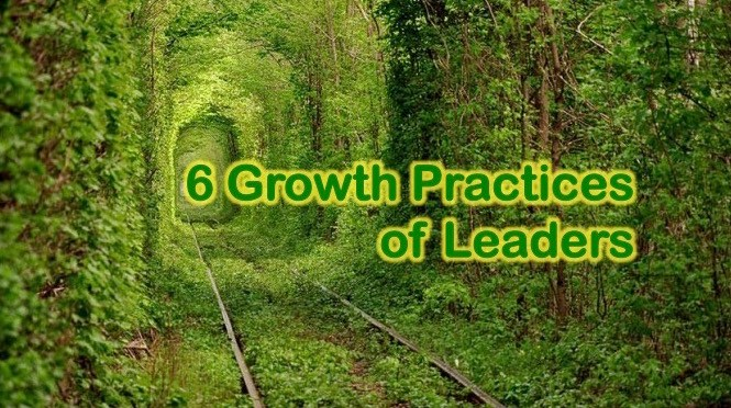 FRIDAY NUGGET: 6 Growth Practices of Leaders