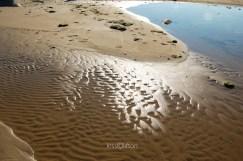 Still Surface, Scalloped Sand