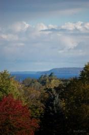 Peninsula_Lake_Through_Fall_Trees