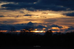 Sunset Sky from Chippewa Run Natural Area