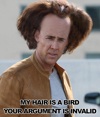rsz_2hairisabird
