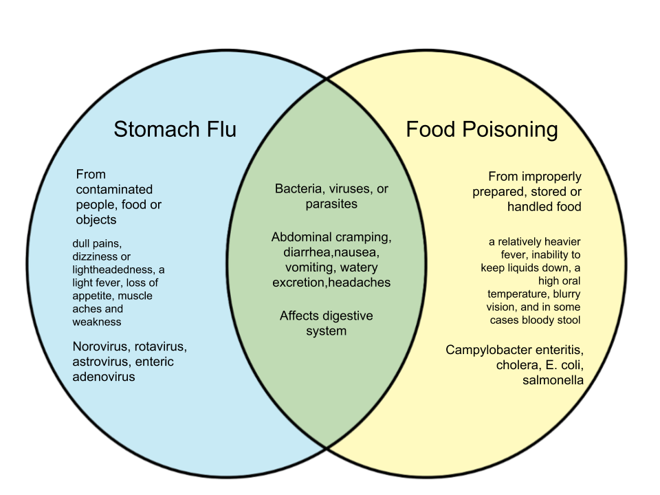 Difference Between Food Poisoning and Stomach Flu - WHYUNLIKE.COM