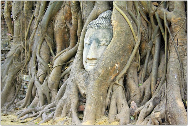 Ayutthaya was the capital of Thailand in the 14th century and should be on your Thailand itinerary