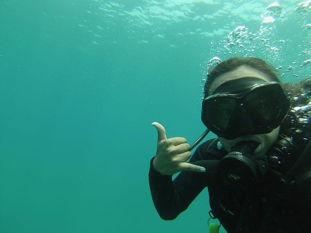 What's Next After Scuba Diving in Koh Tao