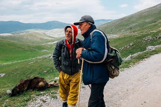 Meeting Local Shepherds While Driving in Bosnia