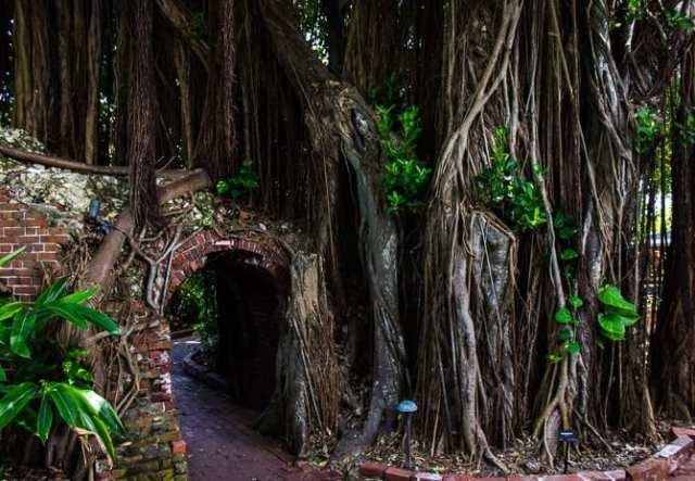 Key West on a Budget: Key West Garden Club