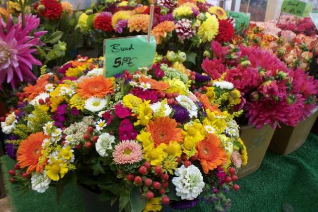 Exploring the Flower Markets - Things to do in Dusseldorf