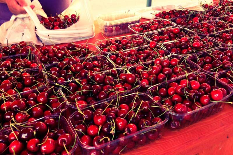 Dolac Farmers' Market - Things to Do in Zagreb