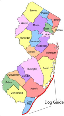 Map Of Jersey Shore Towns : jersey, shore, towns, Where, Along, Jersey, Shore, (LBI-Cape