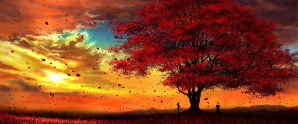 Anime Autumn Scenery Sunset 4k 3840x2160 Anime Backgrounds Autumn 3840x1600 Download HD Wallpaper WallpaperTip