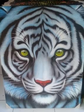 Gambar Harimau Putih : gambar, harimau, putih, Wallpaper, Macan, Putih, 700x933, Download, WallpaperTip