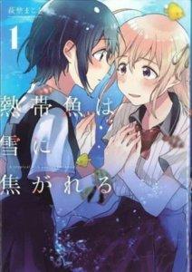Manga A Tropical Fish Yearns for Snow akan Mengakhiri Serialisasinya pada Bulan Maret 2
