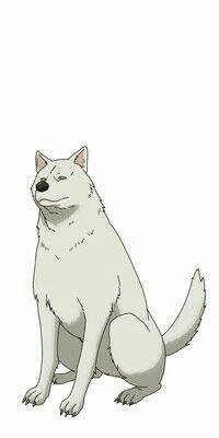 Anime TV Peach Boy Riverside Diperankan oleh Haruka Tomatsu 7