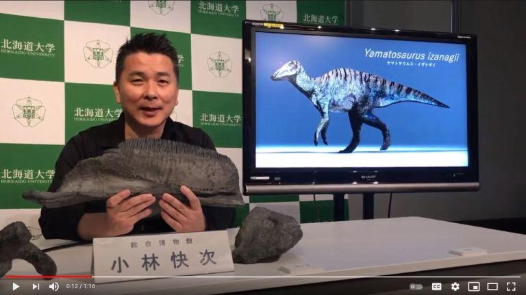 Penemuan Fosil Dinosaurus Spesies Baru di Pulau Awaji Jepang 1