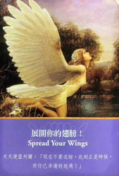 Archangel Oracle Cards Spread Your Wings
