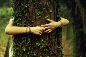 Twee armen omhelzen een boom