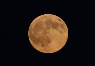 luna_de_cosecha
