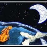 Liebre y la Luna