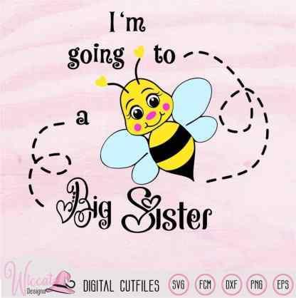 Bee bundle svg, Bumblebee svg, baby boy, Baby girl svg, pregnant svg, big brother svg, big sister svg, svg for cricut, scanncut fcm file