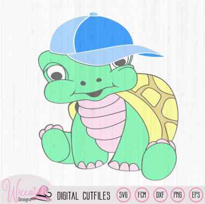 Turtle boy with cap