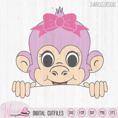 Peekaboo Girl monkey