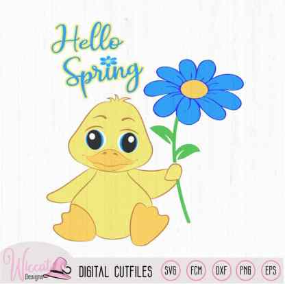 Hello spring baby boy duck