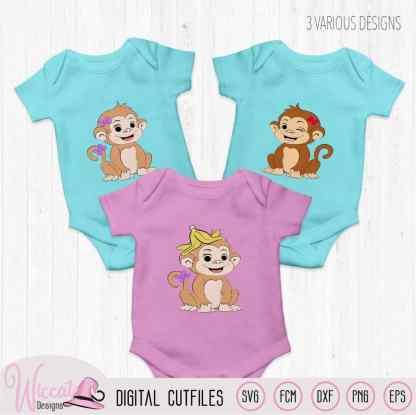 Baby Girl monkey